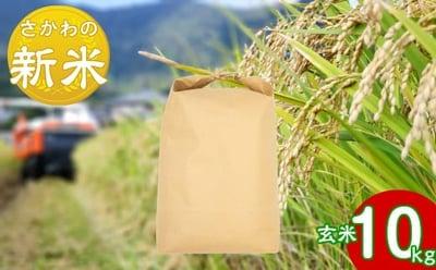 にこまる玄米10kgの詳細はコチラ