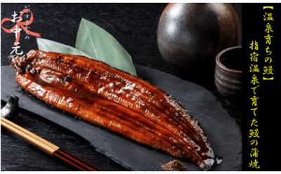 指宿温泉で育てた鰻の蒲焼2尾の詳細はコチラ