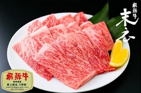 【飛騨牛】絶品ロース焼肉500g