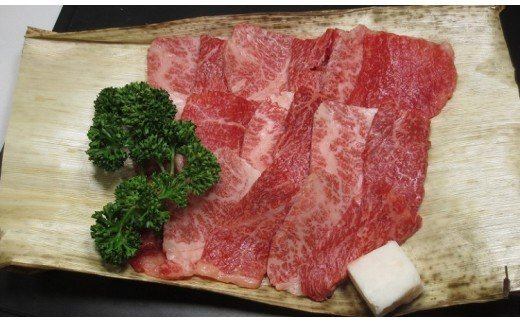 京都肉(亀岡牛・丹波牛)モモ・バラ焼肉用約300g【1097655】