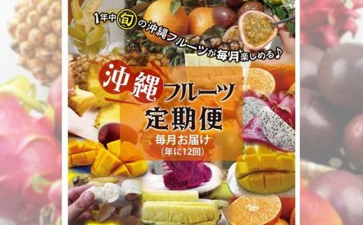 【名護パイン園】年間フルーツ定期便(12ヵ月)