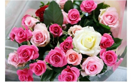 [№5672-0390]【約20本】生産者直送 有機栽培で育った朝切りバラの花束