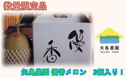 【11211-0086】矢島農園 優香メロン 2個(計3kg)