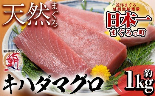 A-547 天然キハダマグロ (約1kg)