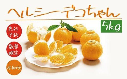 20-596.【先行予約】【数量限定】ヘルシーデコちゃん5kg