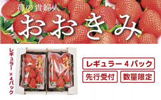 20-773.【先行予約・数量限定】苺の貴婦人おおきみ  レギュラー4パック