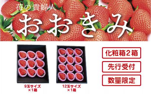 20-774.【先行予約・数量限定】苺の貴婦人おおきみ  化粧箱2箱