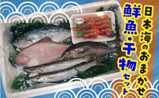 3.日本海のおまかせ鮮魚・干物セット