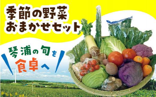 25.季節の野菜おまかせセット