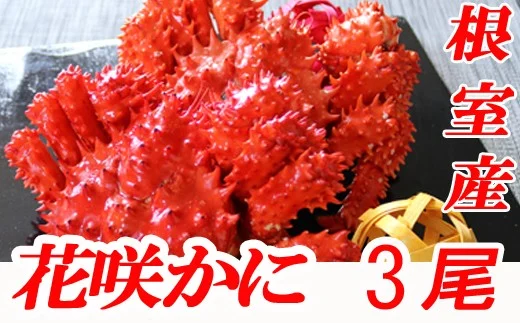 B-70002 【北海道根室産】花咲かに500~650g前後×3尾