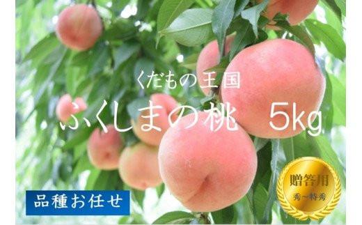 No.1026 【先行予約】ふくしまの桃 5kg 品種お任せ【贈答用】もも モモ