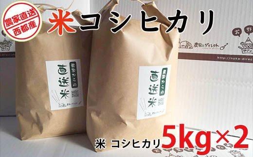 【10日前後でお届け】無洗米 令和2年産 コシヒカリ5kg×2<1.5-142>