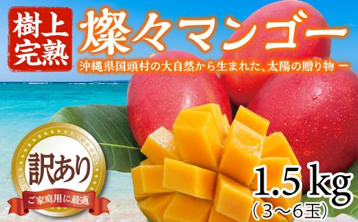 【樹上完熟】燦々マンゴー【訳あり品1.5Kg(3~6玉)】【2021年6月発送開始】