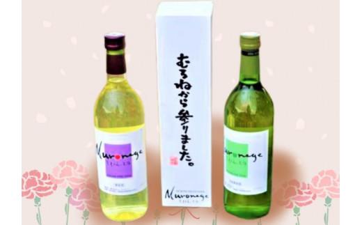 むろねーじゅワイン2本セット(梅ワイン・りんごワイン)