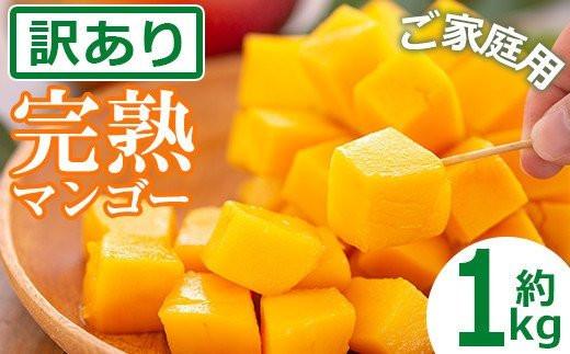 【AN-12】<訳あり・家庭用>宮崎産完熟マンゴー(約1kg)【日向農業協同組合】