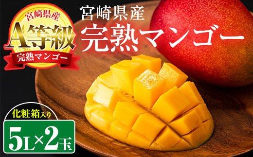 【AN-15】宮崎産完熟マンゴーA等級(5L×2玉・計1.3kg以上)【日向農業協同組合】
