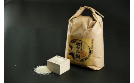 z-60【新米予約】永石さんちのホタル米 5kg×2袋