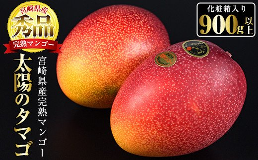 【AN-16】宮崎産完熟マンゴー「太陽のタマゴ」(900g以上)【日向農業協同組合】