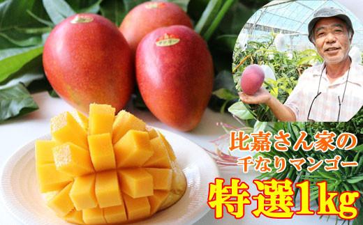 【限定50箱】比嘉さん家の千なりマンゴー(特選・1㎏)
