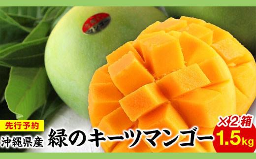緑のキーツマンゴー1.5㎏×2箱【先行予約】【2021年8月下旬~9月頃発送】