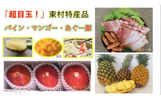 【超目玉!】東村特産(パイン・マンゴー・あぐー豚)定期便セット