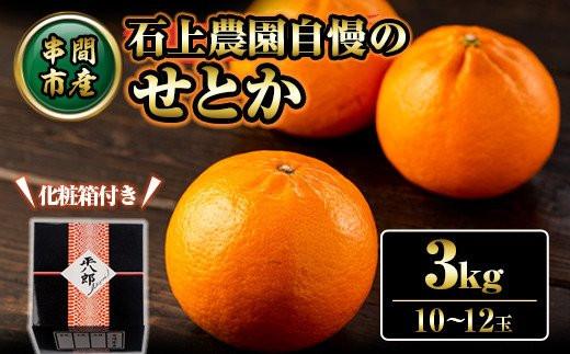 AF-B1 <先行予約受付中 2022年2月末から順次発送>串間市都井「石上農園」自慢の高級柑橘せとか 3kg(10~12玉)【石上農園】