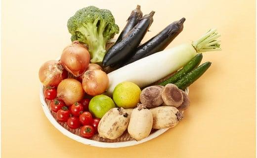 ※定番お野菜6~8品目程度、旬のお野菜1~2品目程度