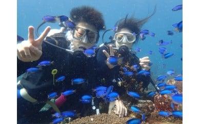 スキューバダイビング国際ライセンス取得3泊4日の旅