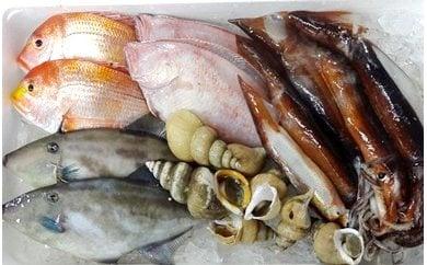 【A-9】 漁師さんおまかせ海の幸セット