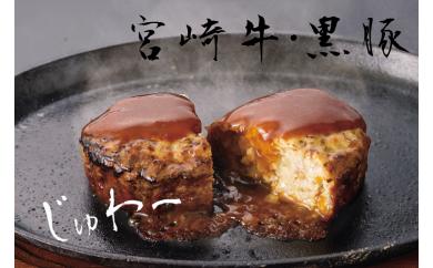A-0117_宮崎牛&黒豚 ハンバーグセット