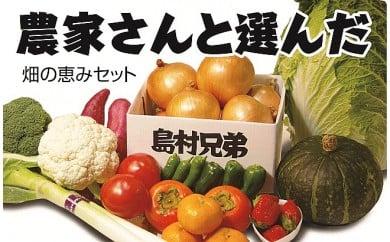 AI-1:淡路島産「畑の恵みセット」(野菜・果物等)