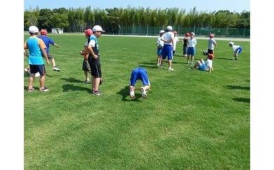 ☆鹿島アントラーズ練習場で使用の芝生 50㎡
