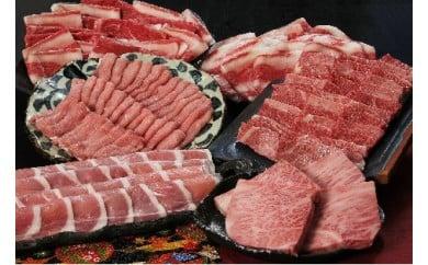 205 【厳選】さぬきブランド肉食べつくしセット(偶数月年6回配送)[三木町の肉の匠が造る!]