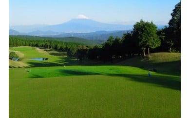E-20 ゴルフプレー券【中伊豆グリーンクラブ】(平日4名様・お食事付き)