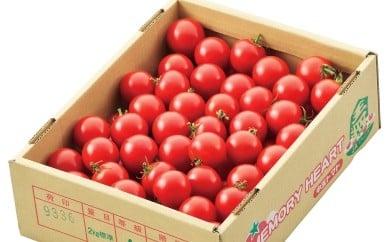 03A3001 中玉トマト(メモリーハート)2kg