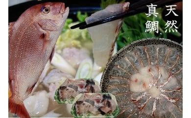 天然真鯛しゃぶしゃぶ鍋セット_KA0462