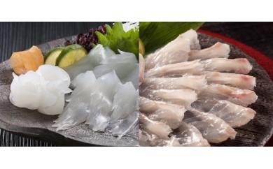 【地場】あ-23 鯛の薄造り&アオリイカの薄造りセット