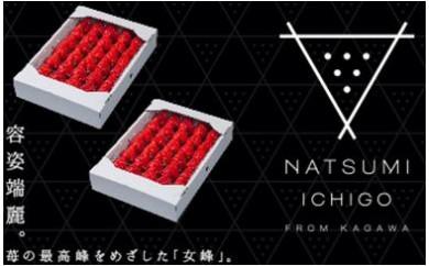 310 NATSUMI  ICHIGO 女峰 1.8kg以上 (2021年2月~6月配送)