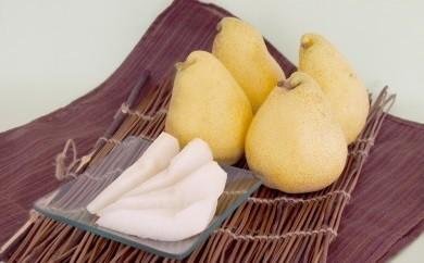芳醇な香り 上品な甘さ♪ 洋梨 6kg 「マルゲリット・マリーラ」 015-B09