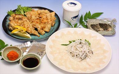 (1103)仙崎ふぐ 虎一 トラフグ