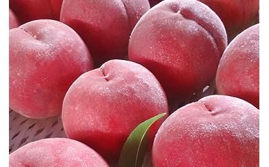【先行予約】1330 日本一の桃の産地 山梨より直送!『完熟特選もも2kg』