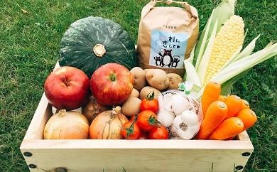 【8月発送】北海道赤井川村の野菜詰合せ
