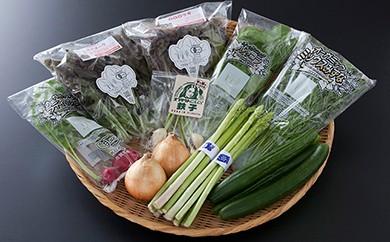 TKB5-004 野菜ソムリエKANEOKAセレクト旬の野菜果物セット5〜6人用