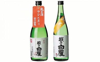 95-13越乃白雁コシヒカリ純米、越乃白雁 純米酒