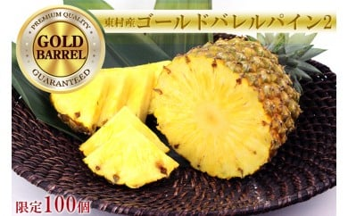 東村産ゴールドバレルパイン2 (2~3個)【2021年6月中旬~順次発送予定】