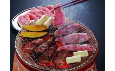 [№5940-0090]神奈川県産  相模豚 とんとろ