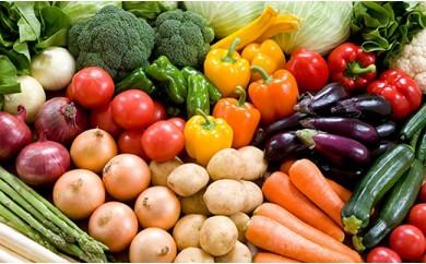 ぽんぽこ村 特選農薬未使用グルメ野菜セット
