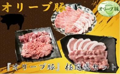 514 肉の匠が選ぶ『オリーブ豚』極選盛セット 4.0kg[三木町の肉の匠が造る!]