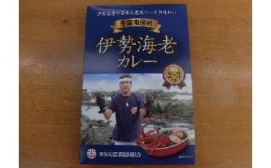 漁協からの贈り物(伊勢海老カレー)[№5651-0543]