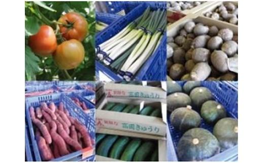 とやま野菜 お楽しみセット(6ヶ月)